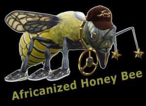http://www.junkbrosnews.com/2007/11/killer-bees.htm